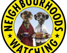 Meerkats Aleksandr and Sergei Join Neighbourhood Watch