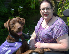 Abandoned Rescue Dogs Become Assistance Dogs