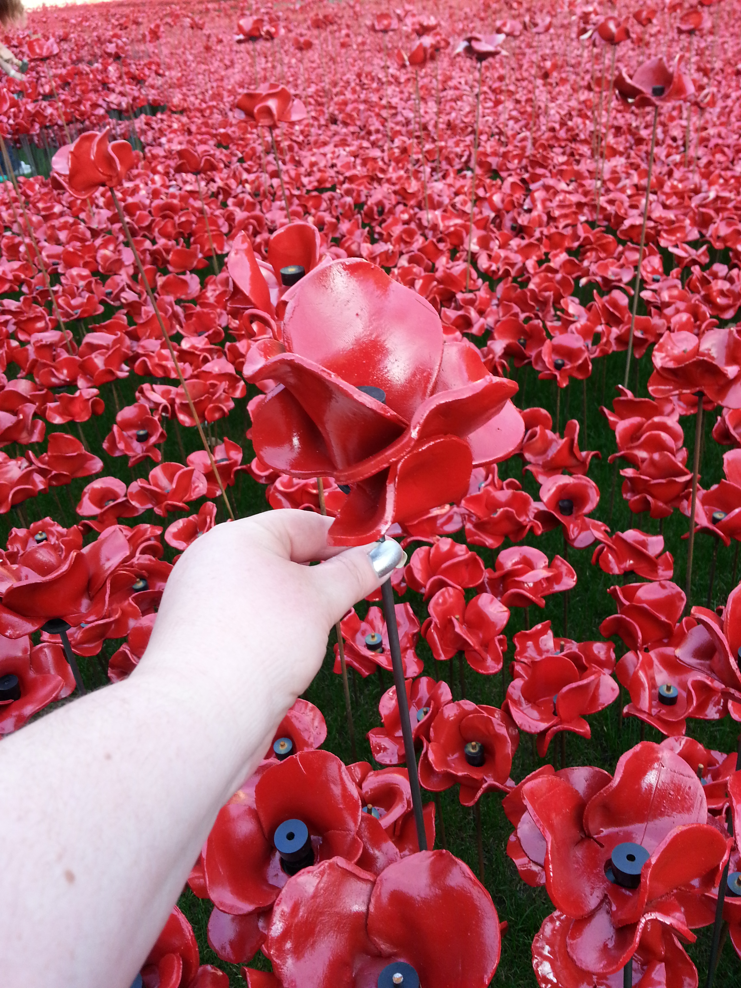 What does tower of london poppy installation mean to you what does the tower of london poppy installation mean to you biocorpaavc Images