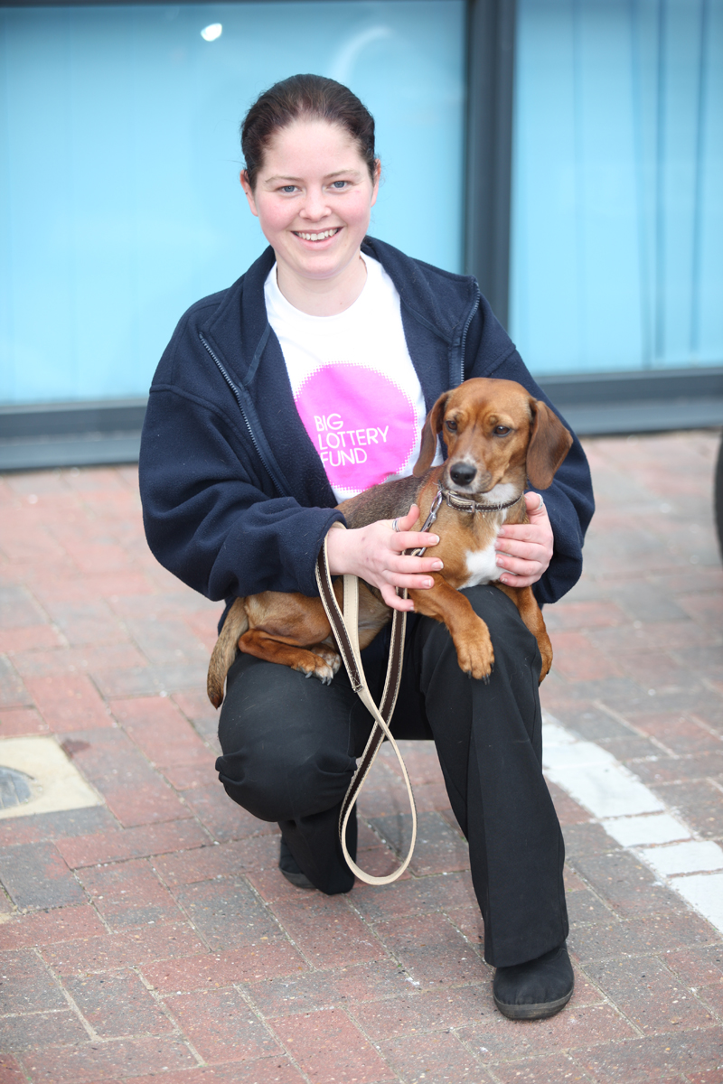 Dogs In Suffolk Free To Good Home