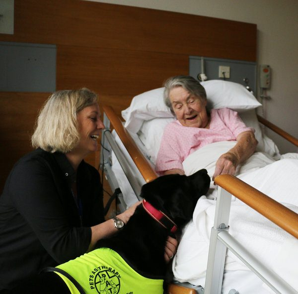 Pet Therapy Dogs Welcomed By Patients at Royal Trinity Hospice