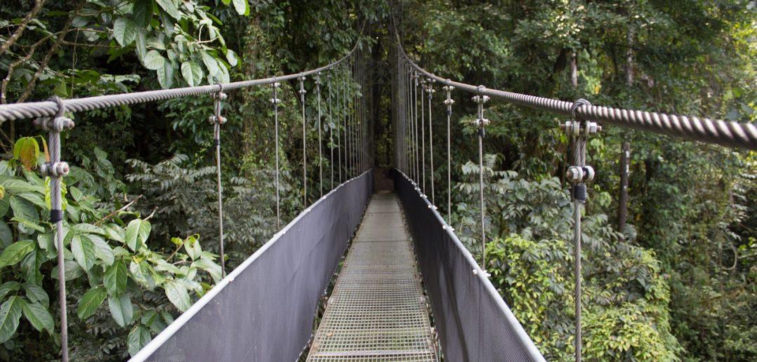 Carer Wins Trip to Costa Rica