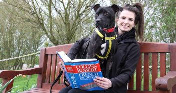 Dogs Learns French at English Rehoming Centre to Prepare for her New Life