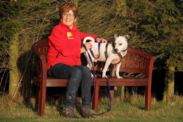Pudsey dog-lover celebrates 20 years of volunteering