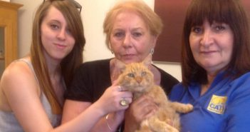 Three Owners Reunited with Their Cats Who Had Been Missing For a Total of 21 years