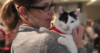 Animal Lovers Unite to Make Utah a No-Kill State by 2019