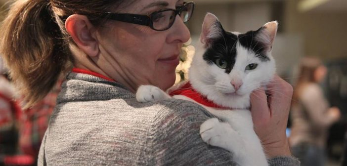 Animal Lovers Unite to Make Utah a No-Kill State by 2019