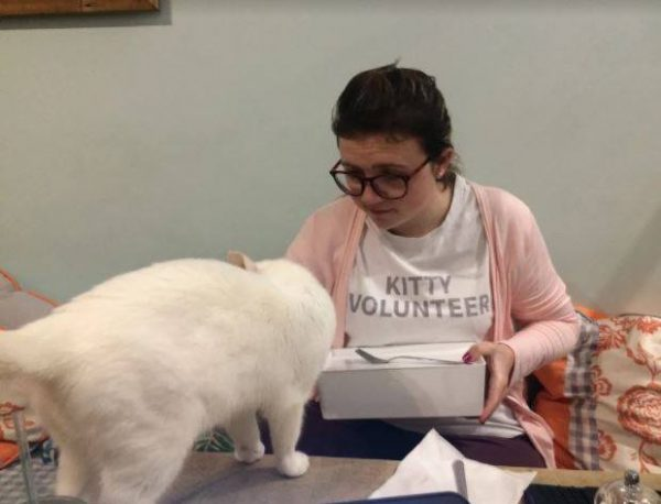 Cat Café Provides Training for People with Disabilities