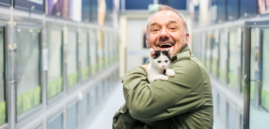 TV star Bob Mortimer meets unwanted cats looking for homes in time for Valentine's Day