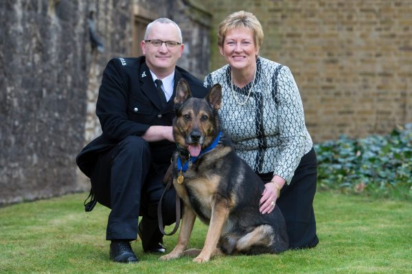 Police Dog Finn to be awarded animals' George Cross for his life-saving devotion