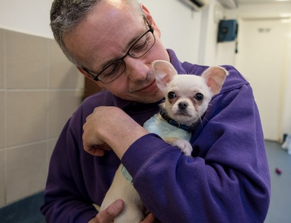 'Tiny' Puppy Found Abandoned and Wrapped Up in a Towel in a Park