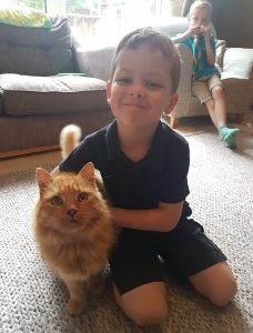 Family Reunited With Their Long-Lost Ginger Cat After Five Years of Heartbreak