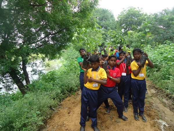 School Eco Club in Tamil Nadu Taking Practical Steps to Be More Environmentally Conscious