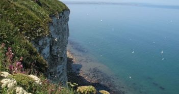 Volunteer Thinks Outside the Box to Help Visitors Get Spec-tacular Views at RSPB Bempton Cliffs