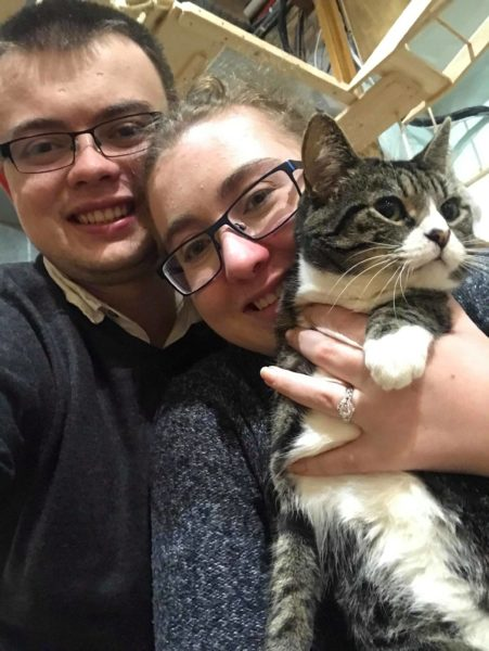 Cat Café Volunteers Get Engaged, With One of the Cats Helping With the Proposal