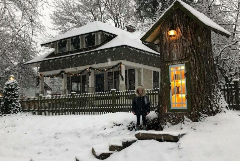 Tree Stump is Transformed into Community Library