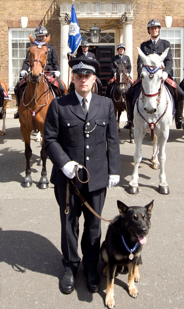 PDSA Order of Merit – The Animals' OBE – For Met Police Dogs and Horses