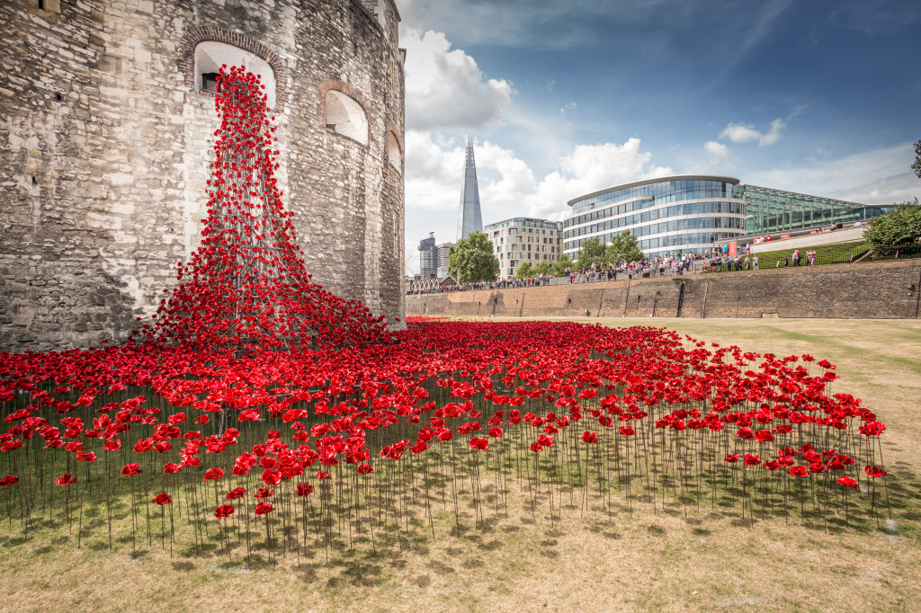 A volunteers experience of being a Tower of London poppy planter