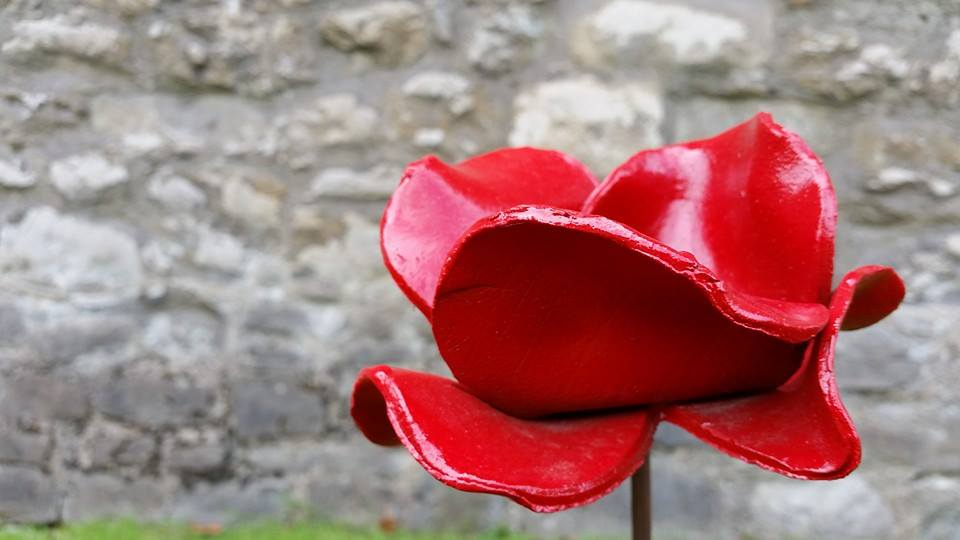 A Volunteers Experience As A Tower of London Poppy Planter