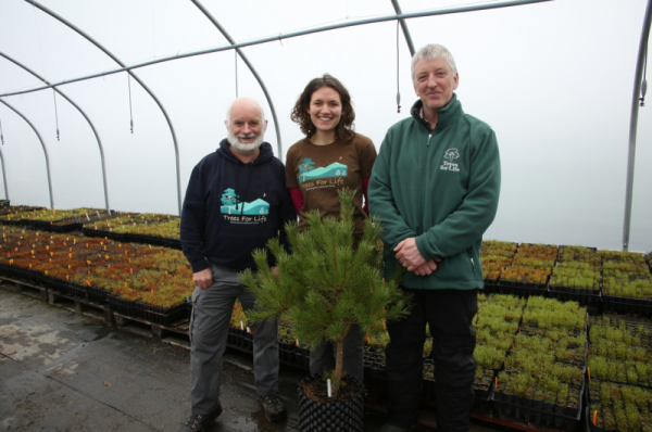 Conservation Charity Trees for Life brings prosperity to the Highlands