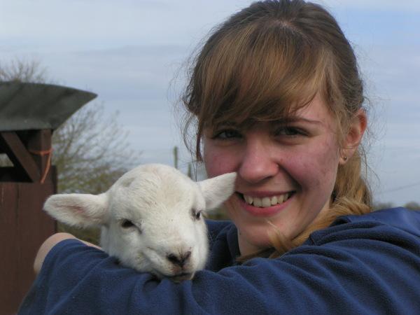 Hero the Lamb: Amazing Animal of the Month