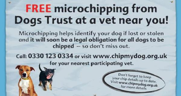 FREE Microchipping for dogs in Scotland
