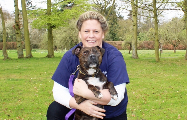Bertie the Rescue Dog Gets His Sight Back