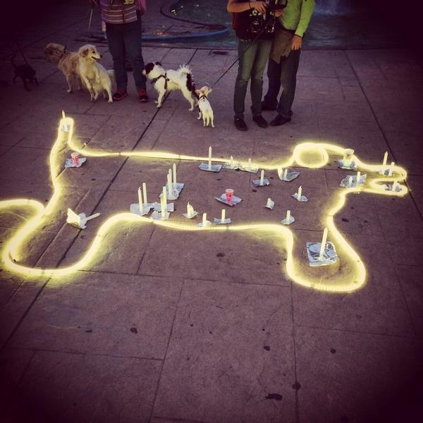 International Homeless Animals' Day - Celebrating Animals Across the World