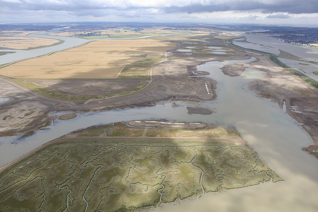 Wallasea Island Wild Coast project 1st Phase Complete