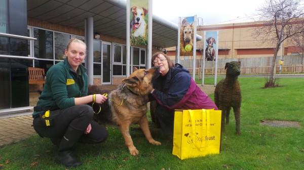 Dog lover battles through Storm Desmond to adopt arthritic homeless hound