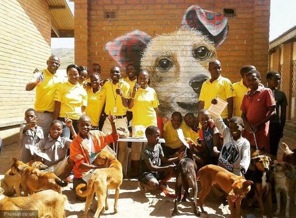 Blantyre Closer to Rabies Free Status