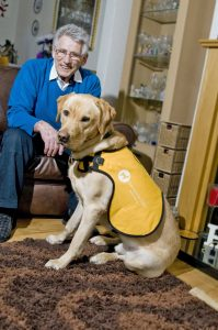 Dementia Dogs Project Grows to Support Scotland's Ageing Population