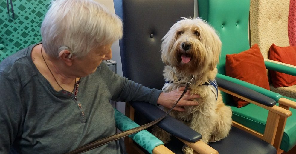 Older People Have Fun with Dogs at Age UK Event