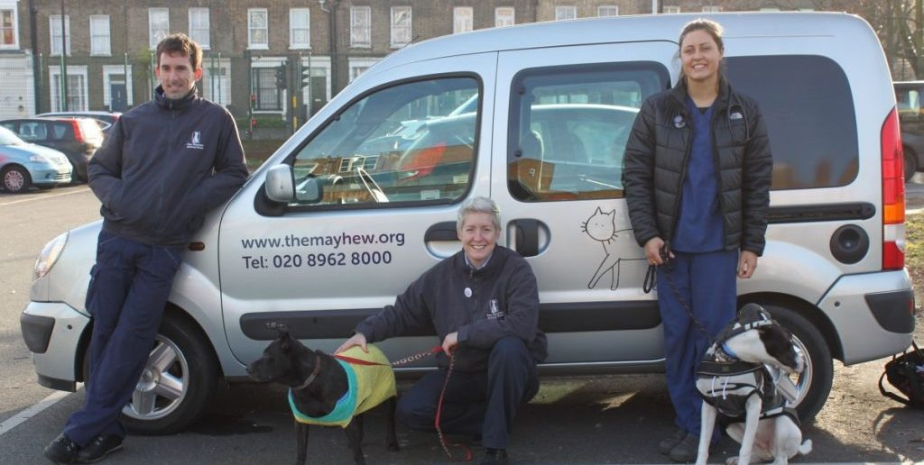 Homeless Peoples' Dogs Helped During the Christmas Period