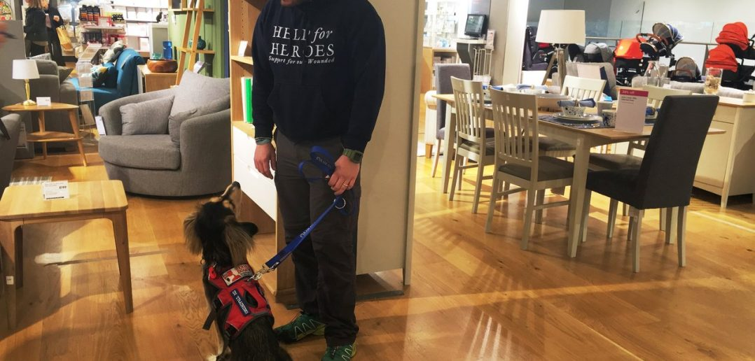 Rescue Dog Gives Soldier With PTSD His Life Back