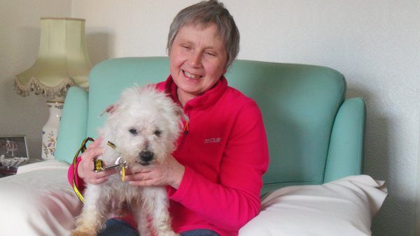Oldest Ever Dogs Trust Rescue Dog Finds Loving New Home