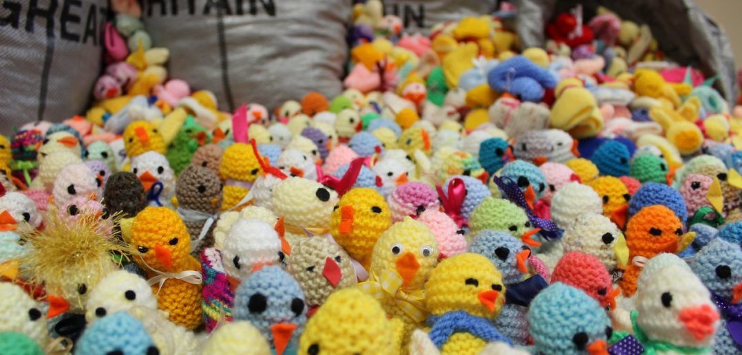 Easter Chick Knit Brings Cheer to Children's Hospice