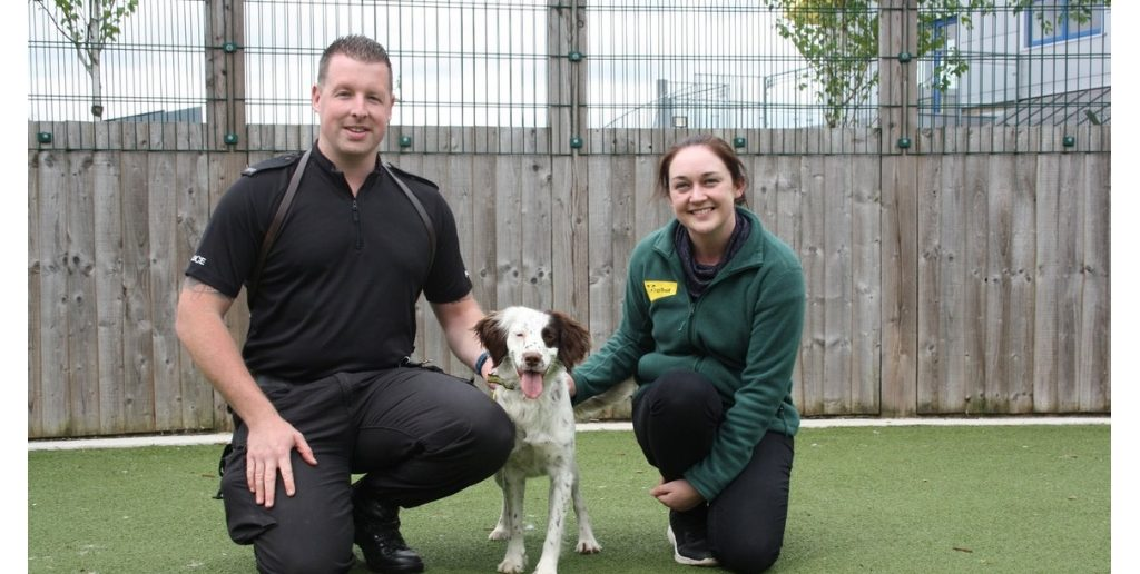 Former Rescue Dog Finds Her Feet as Police Sniffer Dog