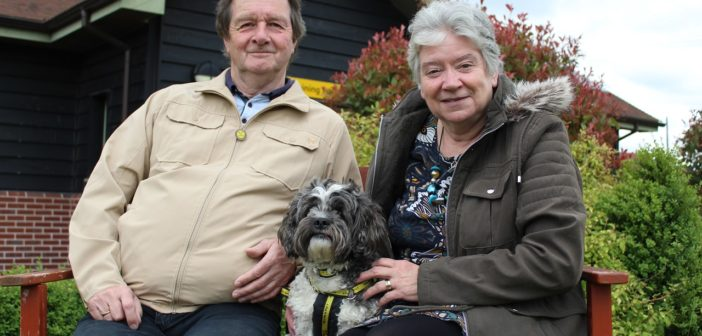Dedicated dog lovers celebrate fostering their 25th rescue dog