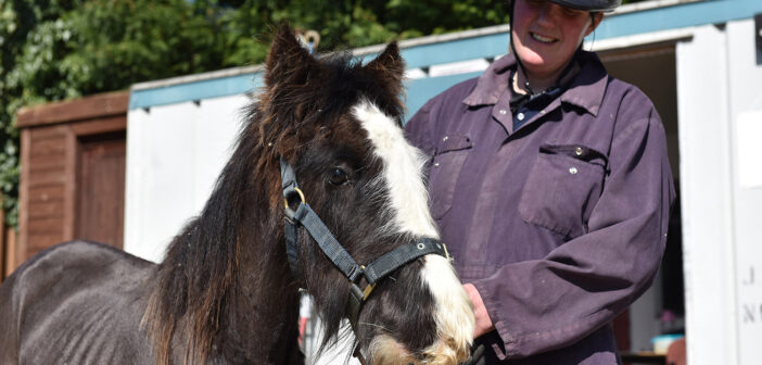 Emaciated Rescue Pony is Transformed During Lockdown