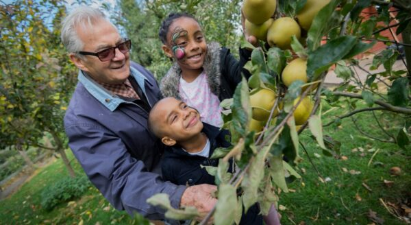 UK charity plants orchards for urban communities