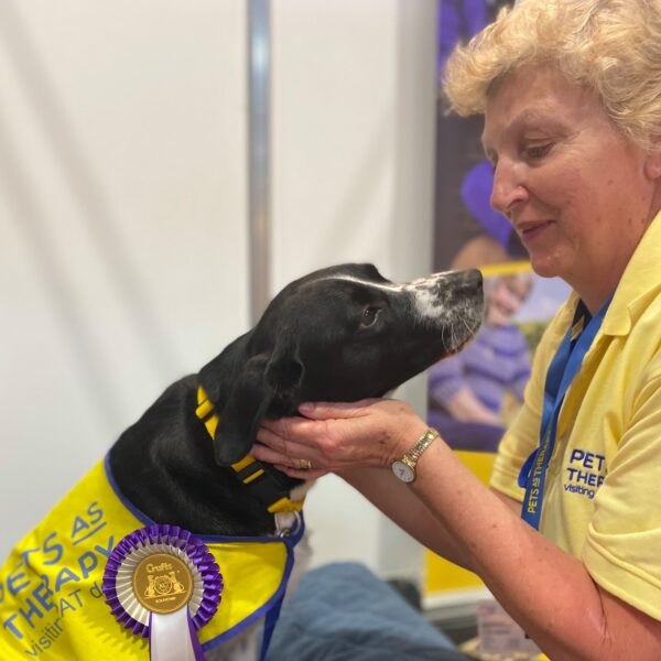 Could Your Pet Be Sue Ryder's Next Ambassadog?