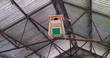 Live nest-cam reveals the secret life of barn owls