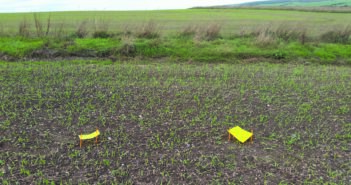 Farmer-led aphid monitoring could reduce pesticide use in tackling cereal crop virus