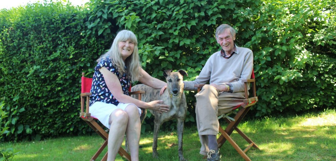 Dog Lovers Rescue Greyhound and Discover Surprise Family Link