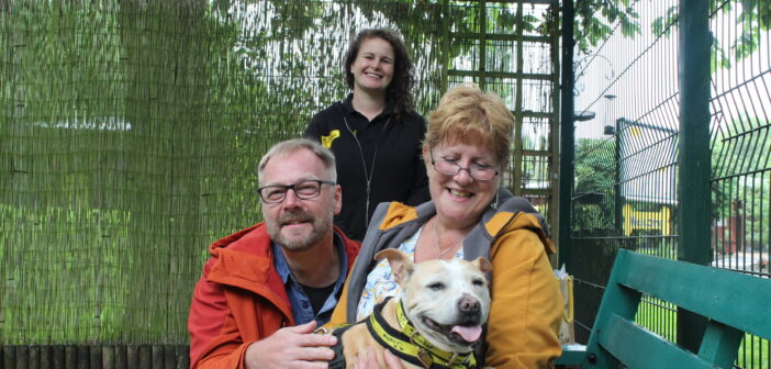 Dogs Trust Merseyside find home their for oldest dog