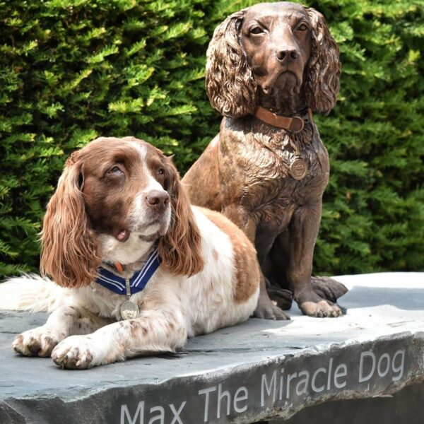 Max the Miracle Dog Has Statue Unveiled in Hometown